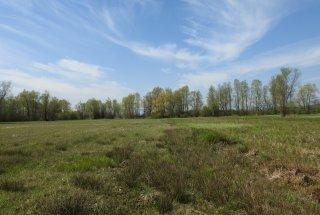 V sodelovanju z lokalnimi kmeti do izboljšanja habitata ogroženih vrst