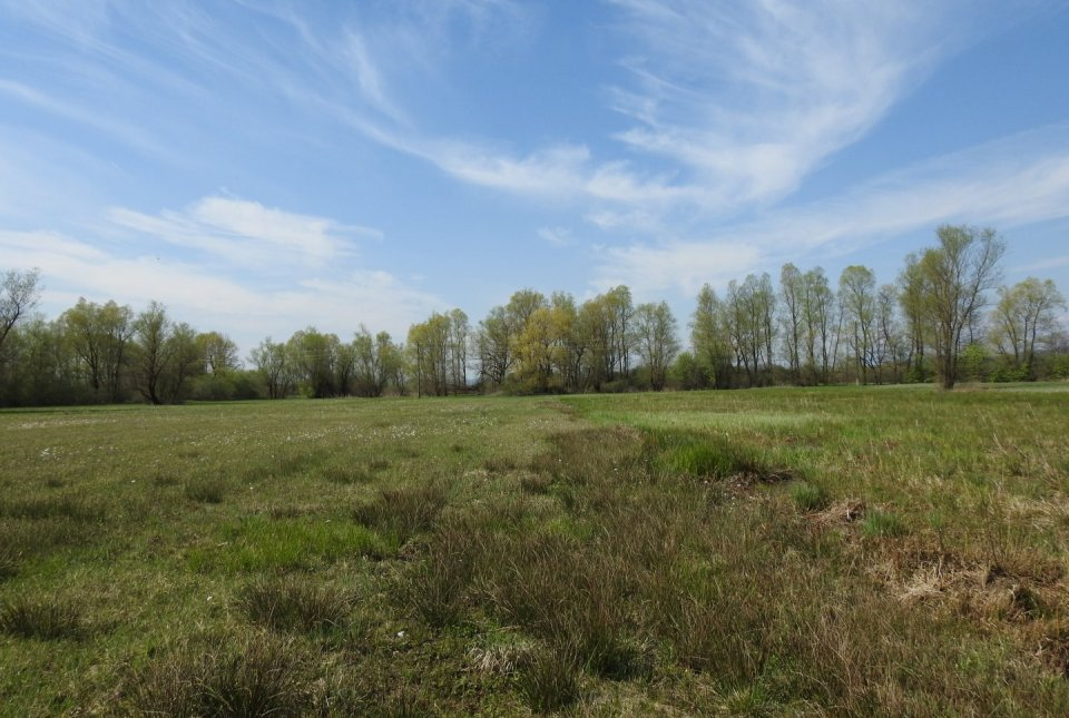 Z lokalnimi kmeti smo sklenili skrbniške pogodbe za skupno 10 ha zemljišč.