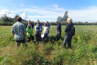 V NR Iški Morost izvajamo številne aktivnosti za izboljšanja stanja populacije kosca.