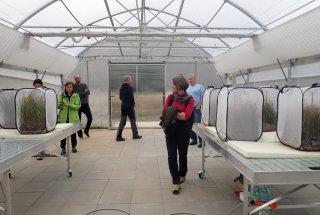 Del preverjanja je bil tudi obisk laboratorija ZRC SAZU, kjer poteka gojenje ličink barjanskega okarčka.