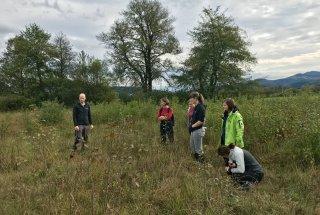 Za konec smo obiskali primer travnika s prevladujočo modro stožko.