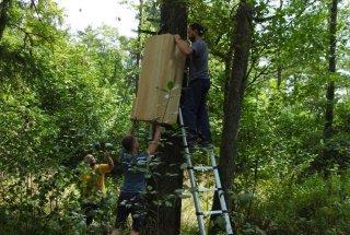 Gnezdilnice so izdelane iz hrastovega lesa. Njihova predvidena življenjska doba je do 10 let.