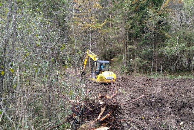 Odstranjena lesna zarast v Strajanovem bregu