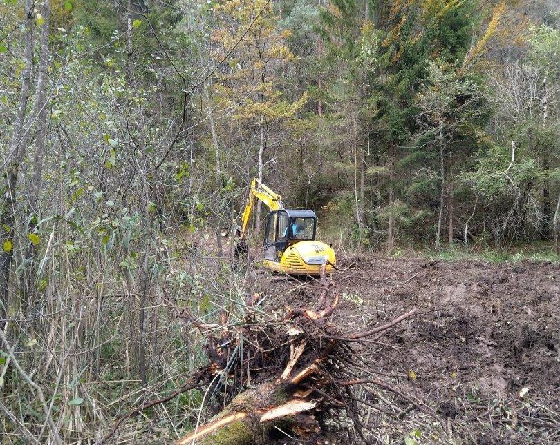 V Strajanovem bregu je bila lesna zarast odstranjena na površini 0,8 ha.