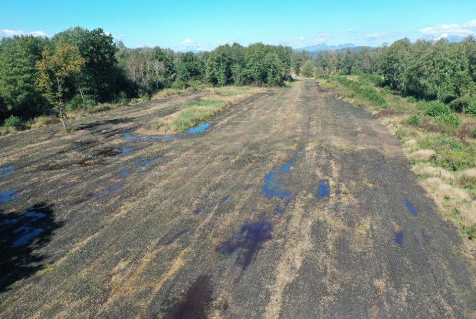 Zasejana projektna zemljišča na Rakovi jelši.