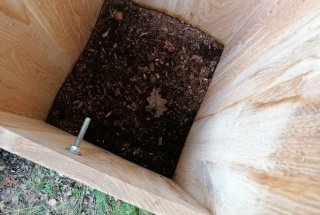 Lesni drobir je substrat za rast gliv in bakterij, s katerimi se ličinke hranijo.